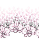 Seamless pattern with dotted moth Orchid or Phalaenopsis and stylized pink petals on the white background. Stock Images