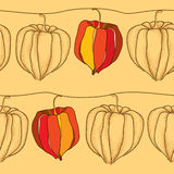 Seamless pattern with dotted Physalis or Cape gooseberry on the beige background Royalty Free Stock Image