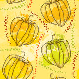 Seamless pattern with dotted Physalis or Cape gooseberry on the colorful blots background Stock Photography