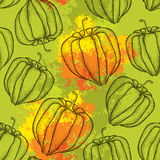 Seamless pattern with dotted Physalis or Cape gooseberry on the orange blots background Stock Photography