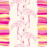 Seamless pattern with dotted pink flamingo and colorful stripes Stock Image