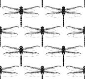 Seamless pattern with dragonflies. Seamless pattern with black dragonflies on white background. Can be used as Wallpaper, wrapping paper, textiles Royalty Free Stock Image