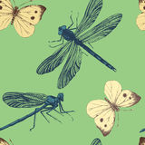 Seamless pattern with dragonflies and butterflies. Seamless pattern with hand drawn dragonflies and butterflies Royalty Free Stock Photo