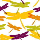 Seamless pattern with dragonflies. Vector illustration, template for your decoration and design Royalty Free Stock Photos