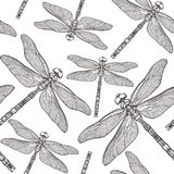 Seamless Pattern with dragonfly`s. Dragonfly background. Isolated on white background. Tattoo sketch. Coloring books Stock Photos