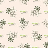 Seamless pattern drawing dill or fennel and text. Seamless pattern with drawing vintage dill or fennel and text - vegan food. Vector flower dill background. Herb Stock Images