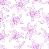 Seamless pattern drawing lily flowers Royalty Free Stock Image