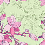 Seamless pattern with drawing magnolia flowers stock photography