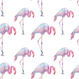 Seamless background of pink flamingos on white background Stock Photography