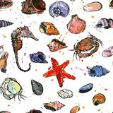 Seamless pattern with drawing shells Royalty Free Stock Image