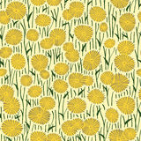 Seamless pattern of drawings of dandelion flowers. Stock Images