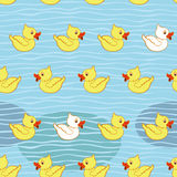 Seamless pattern with ducklings Stock Photography
