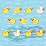 Seamless pattern with ducklings Royalty Free Stock Images