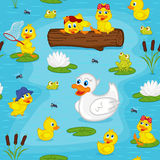 Seamless pattern with ducks on lake Stock Photo