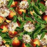 Seamless pattern in Dutch style. Scenic plum in digital art and leaves, peony, butterflies. Dutch still life vector illustration
