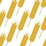 Seamless pattern of ears with ripe grains Royalty Free Stock Photo