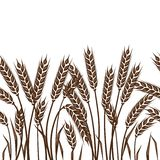 Seamless pattern with ears of wheat Stock Image
