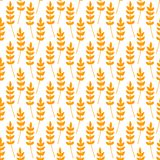 Seamless pattern with ears of wheat Stock Images