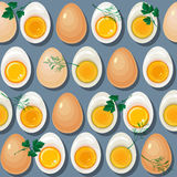 Seamless pattern with eggs,  yolks  and parsley leaves. Stock Images