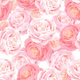 Seamless pattern with elegance color pink roses. stock illustration