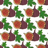 Seamless pattern. Elegant seamless pattern with hand drawn decorative fig fruits, design elements. Can be used for invitations, greeting cards, scrapbooking Royalty Free Stock Photography