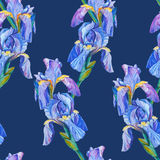 Seamless pattern element with iris flowers Royalty Free Stock Photo