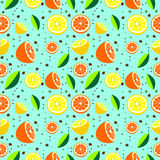 Seamless pattern with elements of citrus fruits Stock Images