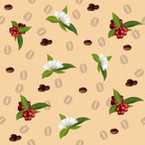 Seamless pattern of the elements of coffee Stock Photography