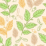 Seamless pattern with elm branches Stock Photos