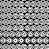 Seamless pattern of embroidered lace Stock Photo