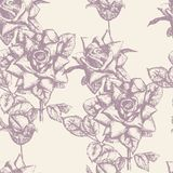 Seamless Pattern Engraved Roses eps 8 stock photos