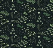 Seamless pattern of Eucalyptus palm fern different tree, foliage. Natural branches, green leaves herbs berries tropical heel hand drawn silhouette watercolor Royalty Free Stock Image