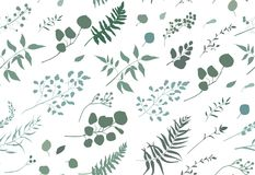 Seamless pattern of Eucalyptus palm fern different tree, foliage. Natural branches, green leaves, herbs, berries tropical heel hand drawn silhouette watercolor Royalty Free Stock Photo