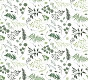 Seamless pattern of Eucalyptus palm fern different tree, foliage. Natural branches, green leaves, herbs, berries tropical heel hand drawn silhouette watercolor Stock Photos