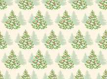 Seamless Pattern with Evergreen Christmas Tree Pine Fir  Stock Photos