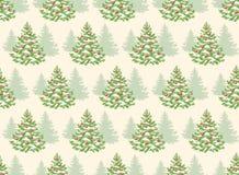 Seamless Pattern with Evergreen Christmas Tree Pine Fir  Stock Photos