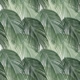 Seamless pattern of exotic jungle palm trees. Green tropical leaves on white background. Seamless pattern of exotic palm trees. Green leaves on white background Stock Photo