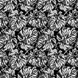 Seamless pattern with exotic leafs. Seamless black and white pattern with exotic leafs of Munster, Tropical summer print. Can be used for wallpaper, pattern Stock Photography