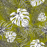 Seamless pattern with exotic leafs Stock Images