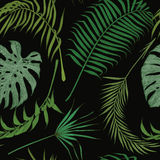 Seamless pattern with exotic leaves on black background. Royalty Free Stock Photos