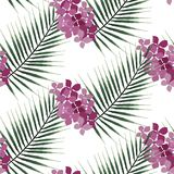 Seamless pattern of exotic palm tree and pink flower. Green leaves on white. Seamless pattern of exotic palm trees. Green leaves on white background. Tropical Royalty Free Stock Photos