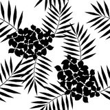 Seamless pattern of exotic palm trees. Black leaves on white background.. Tropical jungle leaf. Flowers Royalty Free Stock Image
