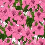 Seamless pattern with exotic pink azalea flowers vector illustration
