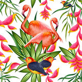 Seamless Pattern with Exotic Tropical Flower and colorful bird Stock Photo
