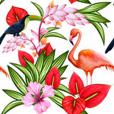 Seamless Pattern with Exotic Tropical Flower and colorful bird Royalty Free Stock Photo