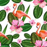 Seamless Pattern with Exotic Tropical Flower and Flamingo Royalty Free Stock Photography