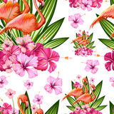 Seamless Pattern with Exotic Tropical Flower and Flamingo Royalty Free Stock Images