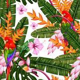 Seamless Pattern with Exotic Tropical Flower and Macau vector illustration