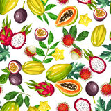 Seamless pattern with exotic tropical fruits. Illustration of asian plants Stock Photography