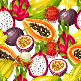 Seamless pattern with exotic tropical fruits. Illustration of asian plants Royalty Free Stock Photography